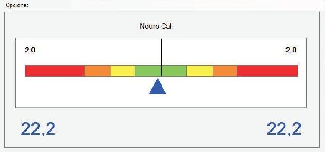 Ventana de Neuro-Cal en software